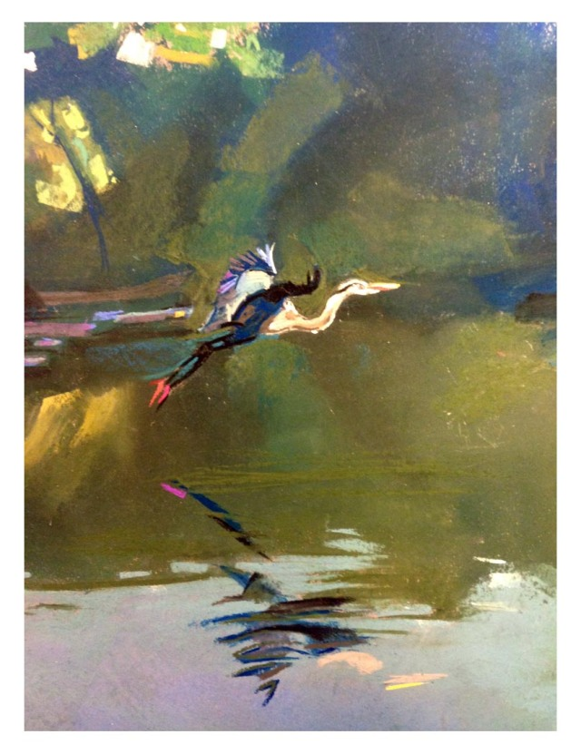 Heron in flight72